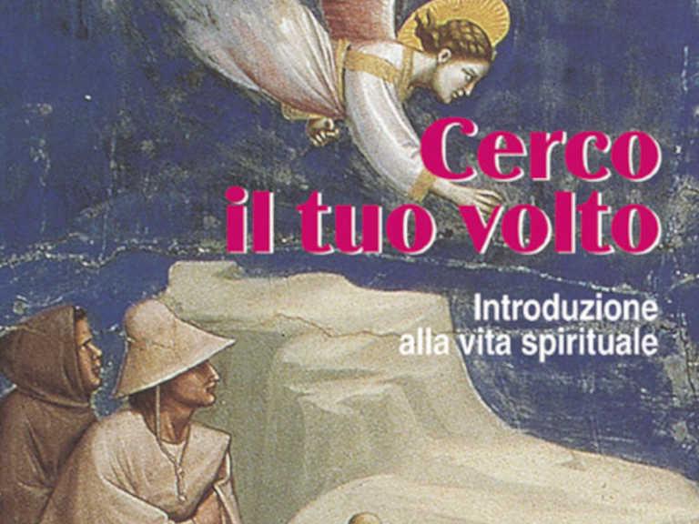 Copertina del libro Cerco il tuo volto di Severino Pagani